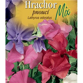 http://www.semena-rostliny.cz/22543-thickbox/lathyrus-odor-hrachor-pn-sm.jpg