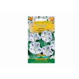 http://www.semena-rostliny.cz/22575-thickbox/pharbitis-pur-povijn-k-b-fi.jpg