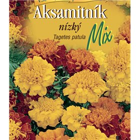 http://www.semena-rostliny.cz/22627-thickbox/tagetes-pat-aks-n-sm.jpg