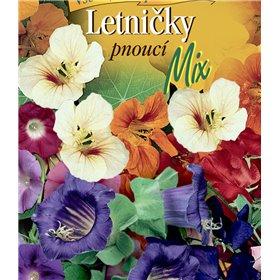 http://www.semena-rostliny.cz/22727-thickbox/sma-s-letniatek-pnouc.jpg