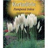 Semena Pampová tráva Cortaderia selloana bílá  lá