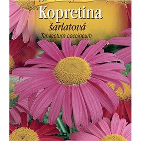 http://www.semena-rostliny.cz/22887-thickbox/tanacetum-coc-kopretina-l-ar.jpg