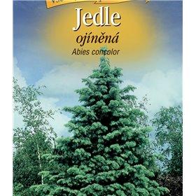 http://www.semena-rostliny.cz/22943-thickbox/abies-concolor-jedle-oj-na-n.jpg