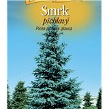 Picea glauca smrk pichlavý