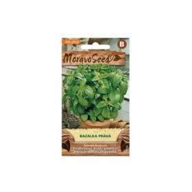 http://www.semena-rostliny.cz/23032-thickbox/bazalka-zelen-l.jpg