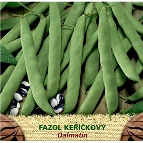 http://www.semena-rostliny.cz/23060-thickbox/fazol-kel-zel-dalmatin.jpg