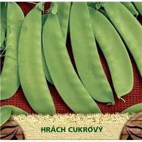 http://www.semena-rostliny.cz/23063-thickbox/hr-ch-cukr-jessy.jpg
