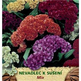 http://www.semena-rostliny.cz/23087-thickbox/celosia-arg-nevadlec-n-sm.jpg
