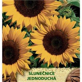 http://www.semena-rostliny.cz/23114-thickbox/helianthus-an-sluneatnice-je-ll.jpg