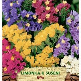 http://www.semena-rostliny.cz/23120-thickbox/limonium-sin-limonka-sm-odr.jpg