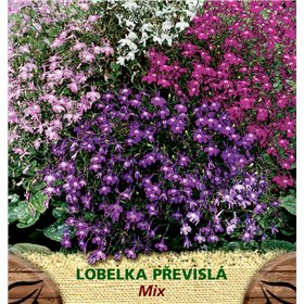 http://www.semena-rostliny.cz/23126-thickbox/lobelia-pen-lobelka-pl-sm.jpg
