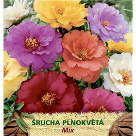 http://www.semena-rostliny.cz/23132-thickbox/portulaca-grand-l-rucha-pln-sm.jpg
