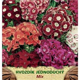 http://www.semena-rostliny.cz/23174-thickbox/dianthus-barb-hvozd-br-v-je.jpg