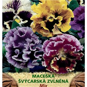 http://www.semena-rostliny.cz/23177-thickbox/viola-x-w-macel-l-v-zvll.jpg