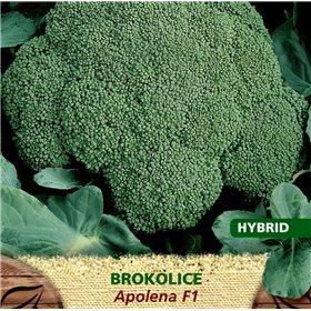 http://www.semena-rostliny.cz/23186-thickbox/brokolice-apolena-f1.jpg