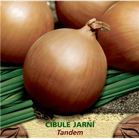 http://www.semena-rostliny.cz/23201-thickbox/cibule-j-lll-tandem.jpg