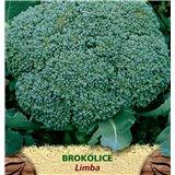 Brokolice Limba