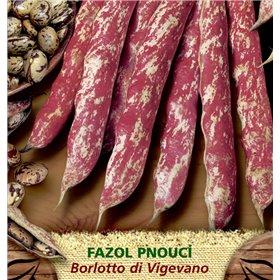 http://www.semena-rostliny.cz/23387-thickbox/fazol-tyat-mel-borlotto-di-vigevano.jpg
