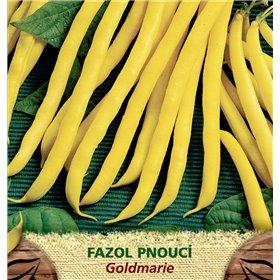 http://www.semena-rostliny.cz/23390-thickbox/fazol-tyat-lllut-goldmarie.jpg