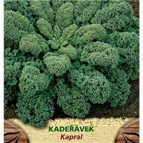 http://www.semena-rostliny.cz/23393-thickbox/kadel-vek-zel-kapral.jpg