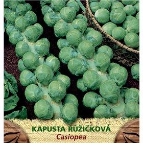 http://www.semena-rostliny.cz/23399-thickbox/kapusta-rl-ll-casiopea.jpg