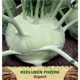 http://www.semena-rostliny.cz/23411-thickbox/kedluben-p-b-l-gigant.jpg