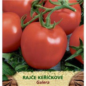 http://www.semena-rostliny.cz/23510-thickbox/rajate-kel-galera-kul.jpg