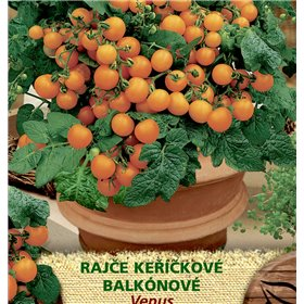 http://www.semena-rostliny.cz/23519-thickbox/rajate-kel-balkon-venus-or.jpg