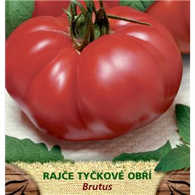 http://www.semena-rostliny.cz/23546-thickbox/rajate-tyat-brutus-obl.jpg