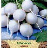 Ředkvička bílá Albena