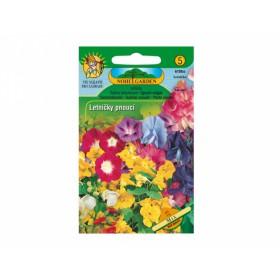 http://www.semena-rostliny.cz/23735-thickbox/sma-s-letniatek-pnouc.jpg