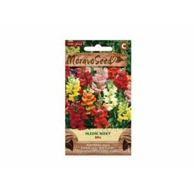 http://www.semena-rostliny.cz/23745-thickbox/antirrhinum-m-hled-k-n-vel.jpg