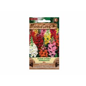 http://www.semena-rostliny.cz/23746-thickbox/antirrhinum-m-hled-k-v-je.jpg