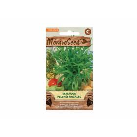 http://www.semena-rostliny.cz/23758-thickbox/estragon-l-pelyna-k.jpg