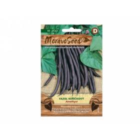 http://www.semena-rostliny.cz/23759-thickbox/fazol-kel-fial-amethyst.jpg