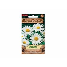 http://www.semena-rostliny.cz/23768-thickbox/leucanthemum-m-kopretina.jpg