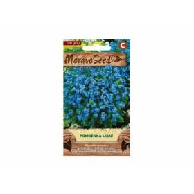 http://www.semena-rostliny.cz/23773-thickbox/myosotis-syl-pomna-nka-mo.jpg