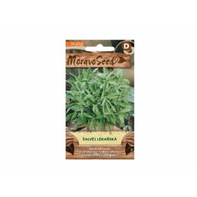 http://www.semena-rostliny.cz/23788-thickbox/l-alva-j-l-k-l.jpg