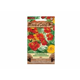 http://www.semena-rostliny.cz/23792-thickbox/tropaeolum-m-lichol-n-sm-pana.jpg