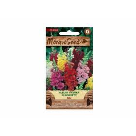 http://www.semena-rostliny.cz/23805-thickbox/antirrhinum-m-hled-k-pl-sm.jpg