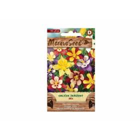 http://www.semena-rostliny.cz/23806-thickbox/aquilegia-hab-orl-atek-sm.jpg