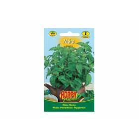 http://www.semena-rostliny.cz/23822-thickbox/m-ta-peprn-l.jpg