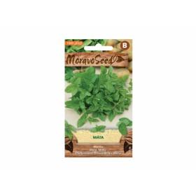 http://www.semena-rostliny.cz/23823-thickbox/m-ta-peprn-l.jpg