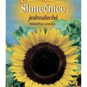 http://www.semena-rostliny.cz/23854-thickbox/helianthus-an-sluneatnice-je-lll.jpg