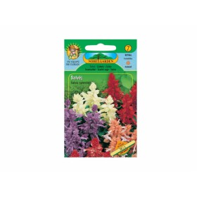 http://www.semena-rostliny.cz/23875-thickbox/salvia-spl-l-alva-j-sm.jpg