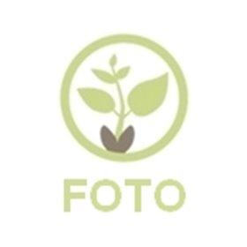 http://www.semena-rostliny.cz/25005-thickbox/p-sek-kombin-mrkev-r-l-edkv-sa.jpg