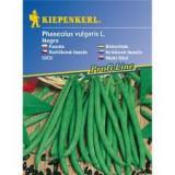 Keříčková fazole Negra - semena fazole bio