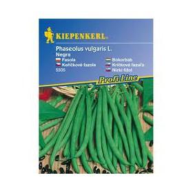 http://www.semena-rostliny.cz/26682-thickbox/kekov-fazole-negra-semena-fazole-bio.jpg