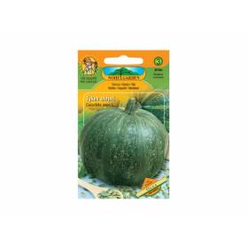 http://www.semena-rostliny.cz/26745-thickbox/tykev-olejn-olga-bez-slupky.jpg