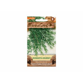 http://www.semena-rostliny.cz/26994-thickbox/rozmar-n-l-k-l.jpg